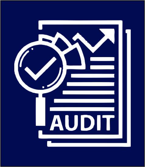 Auditor as a career